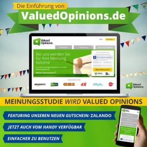 ValuedOpinions