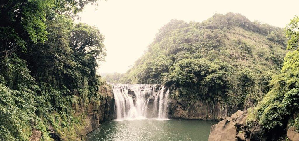 Noch ein Paidmailer mit Dschungel Mails